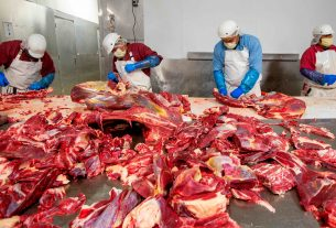 Recruitment For Meat Packer In Canada